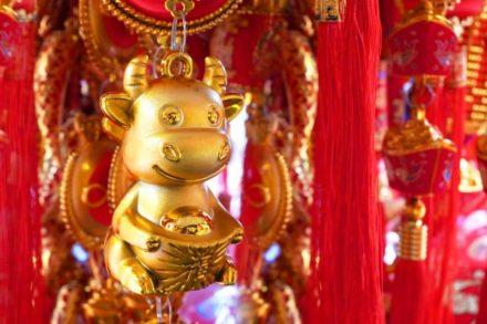 Buey del año nuevo chino 2021
